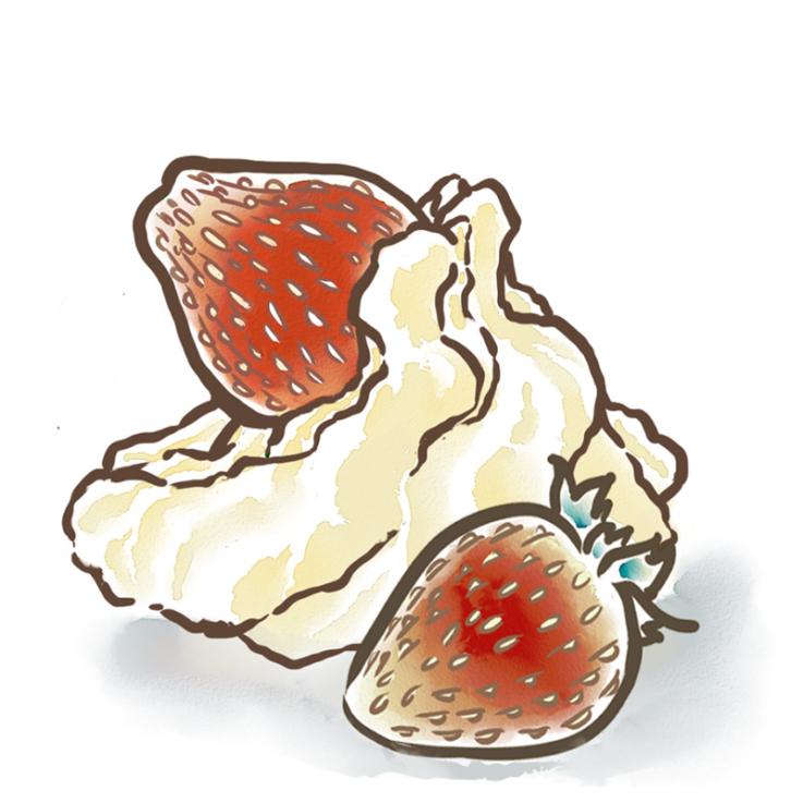 Roly's Strawberries and Cream Fudge