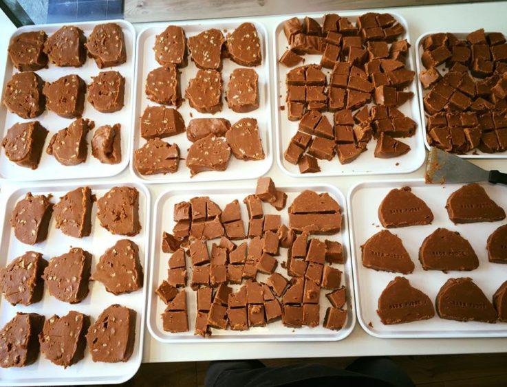 Polperro fudge types