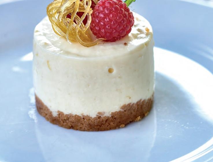 cheesecake (edited-Pixlr)
